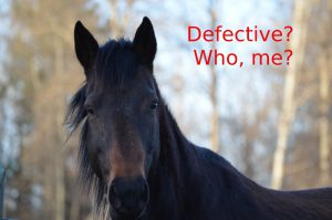 horses are not defective