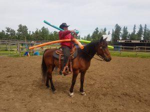 horses pressure stress