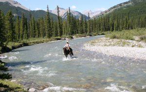 horse sense - river crossing