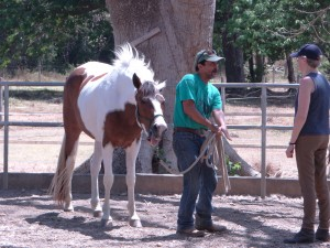 Sky and Esteban of Painted Pony Guest Ranch