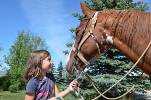Horses sense the innocence in children