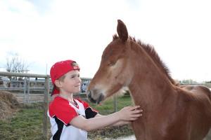 Horses understand kids.
