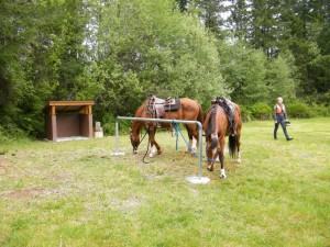 rest area on equine trail