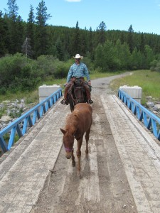 Horsemanship Bridge
