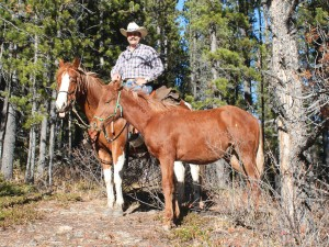 Horsemanship Leadership Trail Colt