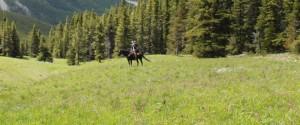 horseback riding kananaskis
