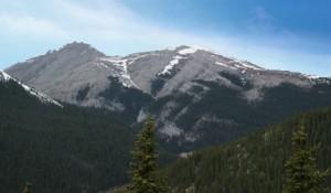 moose mountain, kananaskis, alberta
