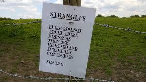 strangles