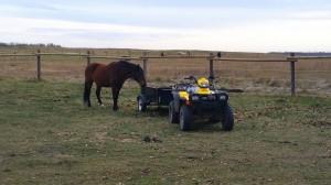 wild horse atv alberta